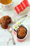 chokladfruktmuffiner Royaltyfri Bild