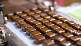 Chokladgodisar på transportör på konfekt stock video