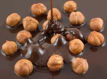 chokladhasselnöt Fotografering för Bildbyråer