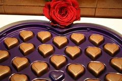 Chokladhjärtor och röd ros Royaltyfri Bild