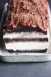 ChokladIcecream Royaltyfri Bild