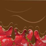 chokladjordgubbe Arkivfoto