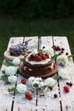 Chokladkaka med sommarbär Arkivfoto