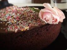 Chokladkaka och blomma Royaltyfri Foto
