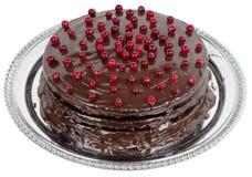 Chokladkaka som dekoreras med tranbär arkivfoto