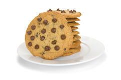chokladkakabunt Arkivfoto