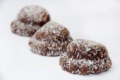 Chokladkakor med kokosnöten Royaltyfri Fotografi
