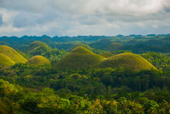Chokladkullar, Bohol ö, Philippines Royaltyfri Bild