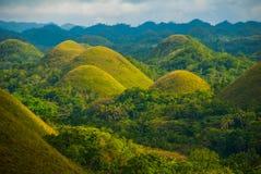 Chokladkullar, Bohol ö, Philippines Fotografering för Bildbyråer