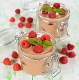 Chokladmousse med hallon Royaltyfri Fotografi