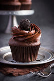 Chokladmuffin med chokladglasyr på kaka royaltyfria foton