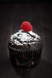 Chokladmuffin med det pudrade socker och hallonet Fotografering för Bildbyråer
