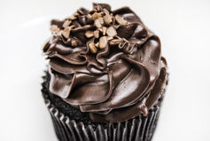 Chokladmuffin med glasyr på kaka Royaltyfri Foto
