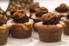 chokladmuffinvalnöt Fotografering för Bildbyråer