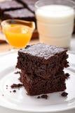 Chokladnissen Royaltyfria Bilder