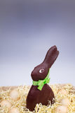 Chokladpåsk Bunny Standing i korg med vanliga ägg Royaltyfria Foton