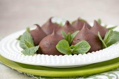 Chokladprofiteroles med stugan. Royaltyfria Foton
