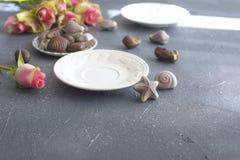 Chokladsötsaker i form av cockleshells Skal på en platta Romanska och ljusa färger den antika koppen för affärskaffeavtalet danad Fotografering för Bildbyråer