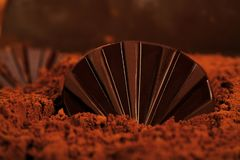 Chokladskal på en chokladstrand arkivfoto