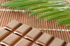 Chokladstång och palmblad på bambuplacemat Royaltyfria Foton