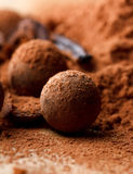 chokladtryffel Arkivbild