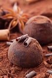 chokladtryffel Royaltyfria Foton