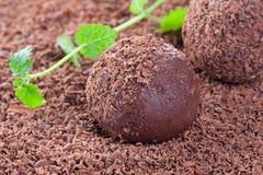 chokladtryffel Royaltyfri Bild