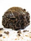 chokladtryffel Arkivbilder