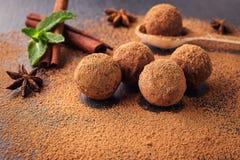 Chokladtryffel, tryffelchokladgodisar med kakaopulver Hemlagade nya energibollar med choklad Blandade tryfflar för gourmet Royaltyfri Foto