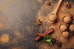Chokladtryffel, tryffelchokladgodisar med kakaopulver Hemlagade nya energibollar med choklad Blandade tryfflar för gourmet Arkivfoto