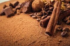 Chokladtryffel, tryffelchokladgodisar med kakaopulver Hemlagade nya energibollar med choklad Blandade tryfflar för gourmet Fotografering för Bildbyråer