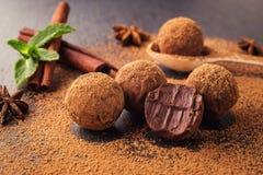 Chokladtryffel, tryffelchokladgodisar med kakaopulver Ho Royaltyfria Bilder