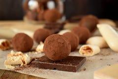 Chokladtryfflar som strilas med kakaopulver arkivbilder