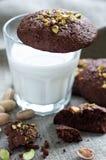 Chokolade cookies Stock Photography