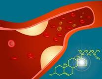 Cholesterol Stock Afbeelding