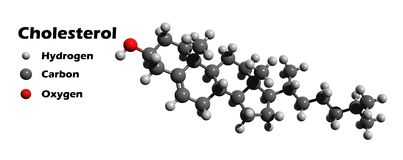 Cholesterol. 3D molecular structure of cholesterol Royalty Free Stock Photography