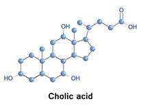 Cholic acid cholesterol. Royalty Free Stock Photography