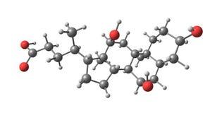 Cholic acid molecular structure isolated on white Stock Images