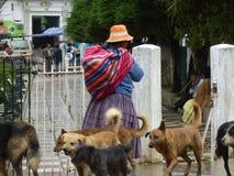 Cholitas Lizenzfreies Stockfoto