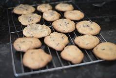 Chololate fresco Chip Cookies Warm del horno Foto de archivo