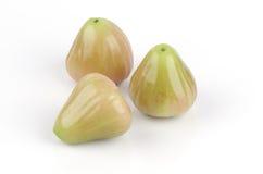 Chomphu泰国名字,蒲桃。(番樱桃javanica lamk。家庭桃金娘科。) 免版税库存照片