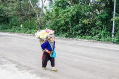 Chomthong,清迈,泰国29 10月2017祖母运载 图库摄影