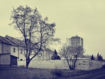 Chomutov,捷克共和国- 2018年2月09日:墙壁、树和房子Lidicka街道的在天期间没有太阳与蓝色黄色st 免版税库存照片