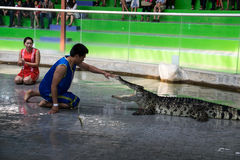 Chon Buri, THAILAND - Januari 1 2015: de krokodil toont bij crocodil stock fotografie
