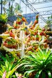 CHONBURI, TAILÂNDIA - 18 de março de 2016: Decoração bonita do jardim Fotos de Stock Royalty Free