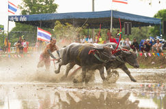 CHONBURI, THAILAND - JULY 7: unidentified racer at Buffalo Racin Stock Images