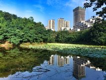 Chongqing city Royalty Free Stock Photography