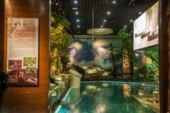 Chongqing Three Gorges Museum Three klyftamuseum av historieshowen den storartade Three Gorges för ` `en, Arkivbilder