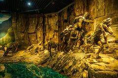 Chongqing Trzy wąwozów muzeum Trzy wąwozów muzeum historii przedstawienie ` Trzy wąwozów wspaniały ` Zdjęcia Royalty Free