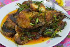 Choo Chee Pla  Curry-Fried Fish Thai Cuisine. Stock Photos